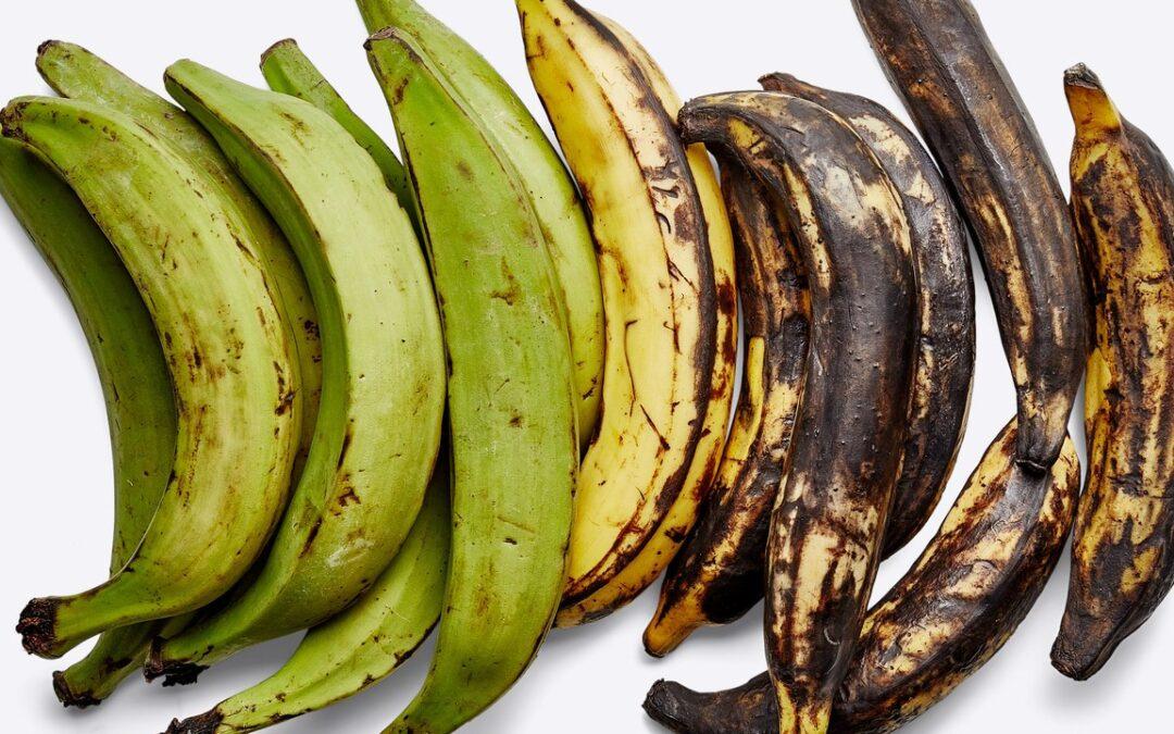 Cómo cocinar plátanos, el primo mucho más almidonado y más versátil del plátano
