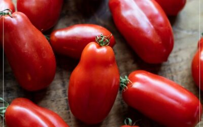 Receta de tomates asados de San Marzano ¡Tan bueno!