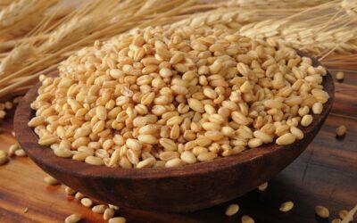 Ensalada de granos marinados con guisantes de ojo negro